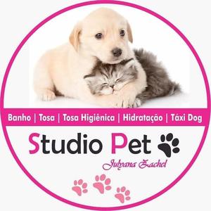 Studio Pet - Julyana Zachel